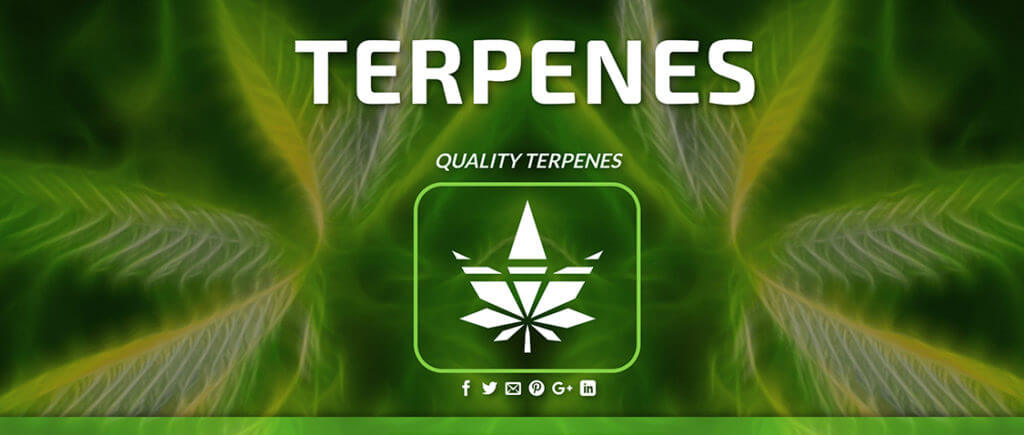 awesome terpenes